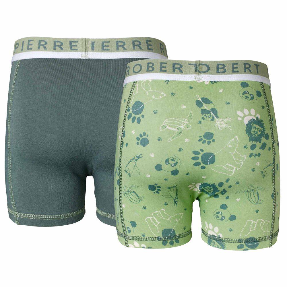 Poikien luomupuuvillaiset bokserit, green, hi-res
